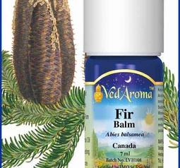 Fir, Balm Essential Oil org.