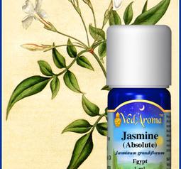 Jasmine 1ml org.
