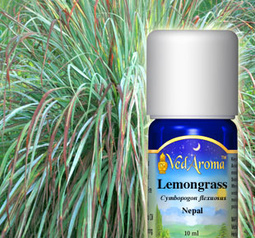Lemongrass Essential Oil org.