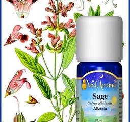 Sage org.