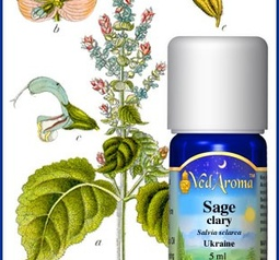 Sage, clary Essential Oil org.