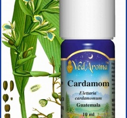 Cardamom Essential Oil org.