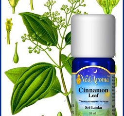 Cinnamon (leaf) Essential Oil