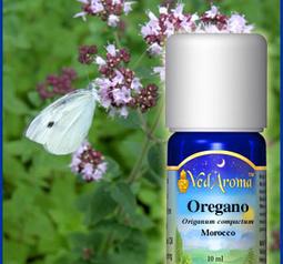 Oregano aromaolja eko. certifierad